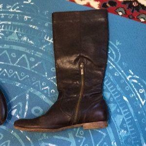 Frye Jillian riding boots